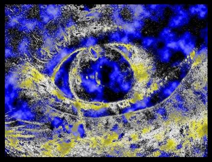 eye2BIS800signé